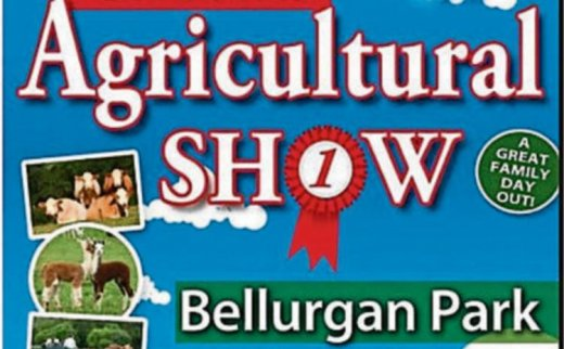 Co. Louth Agricultural Show