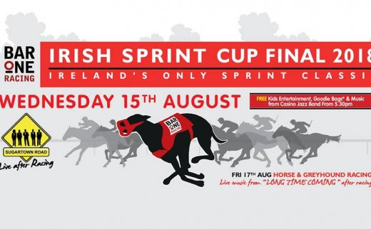 Dundalk Stadium Racing Fixtures