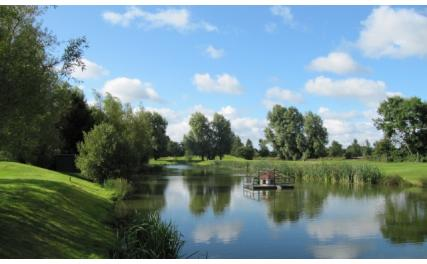 Ardee Golf Club - water