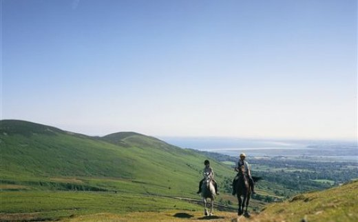 Ravensdale Lodge - Equestrian & Trekking Centre