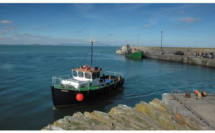Trawlers at Clogherhead Pier